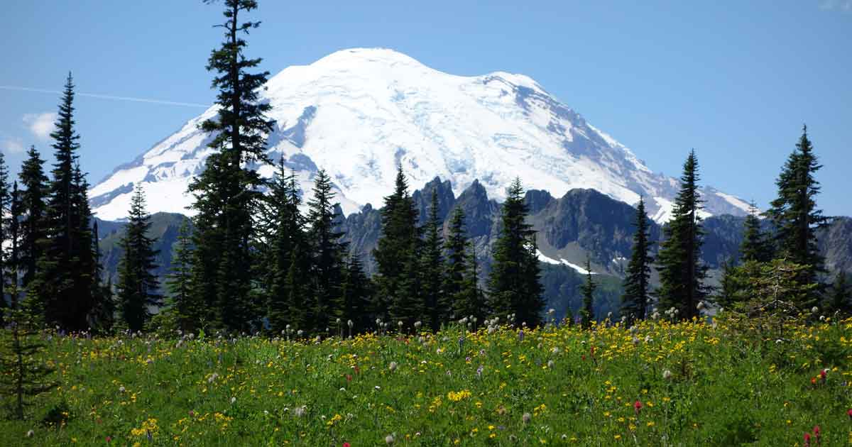 escape-to-these-national-parks-MtRainier