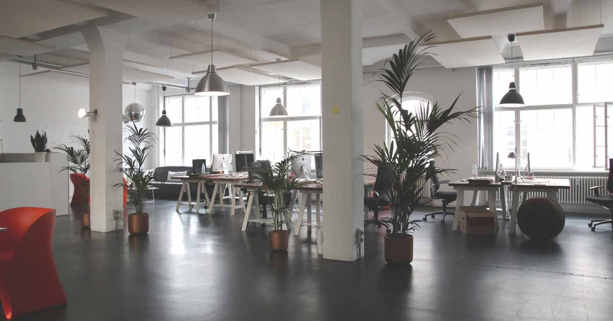 Open-Plan Offices: Do They Really Encourage Productivity?