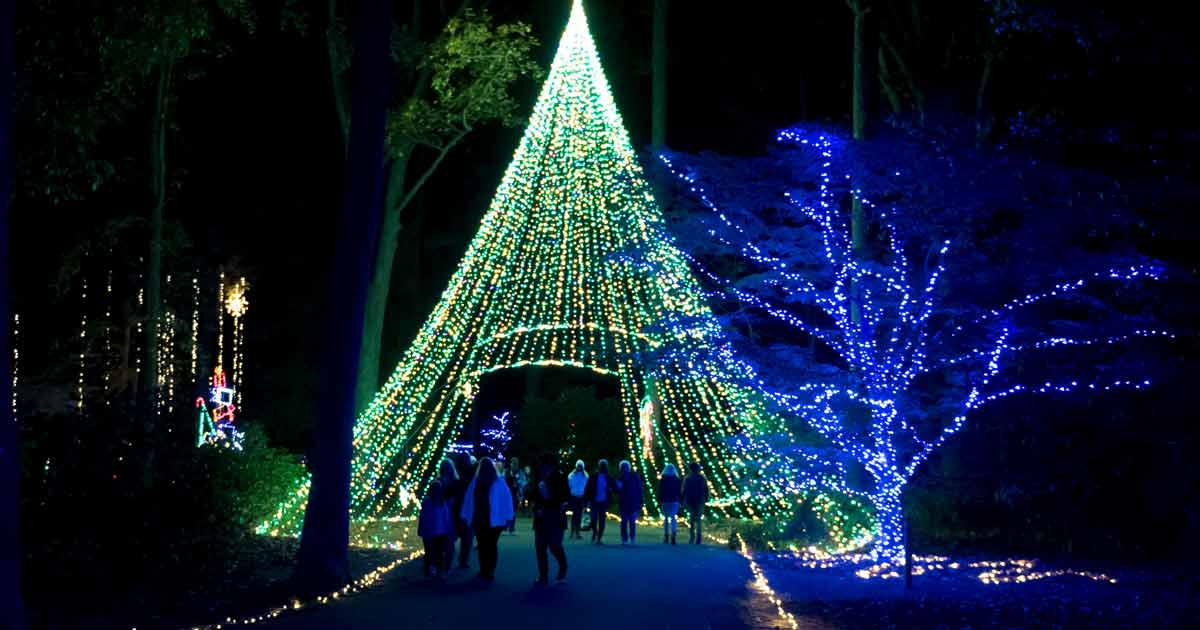 Illuminate the Holidays With Joy in Norfolk